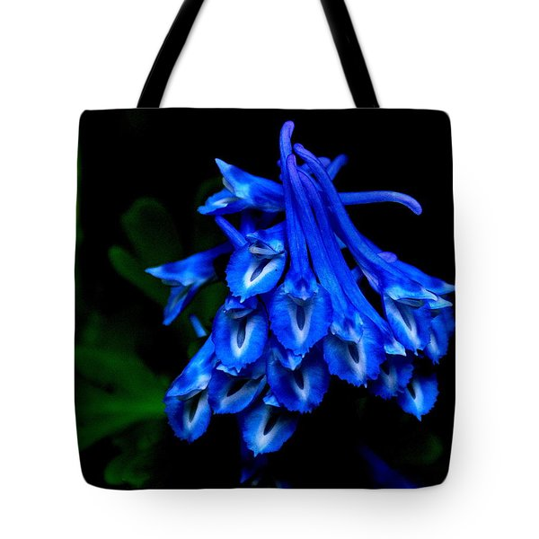 Garden Jewel Tote Bag by Tanya  Searcy