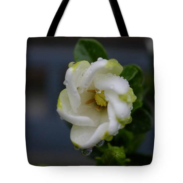 Gardenia Raindrops Tote Bag