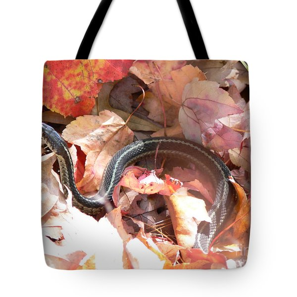 Garter Snake Tote Bag by Kevin Fortier