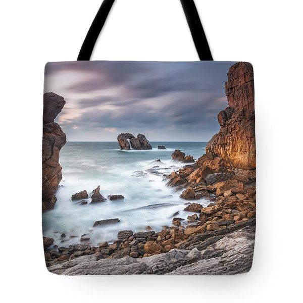 Gate In The Ocean Tote Bag by Evgeni Dinev