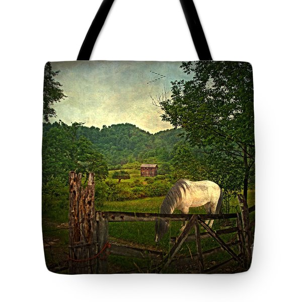Gate To The Past Tote Bag by Lianne Schneider