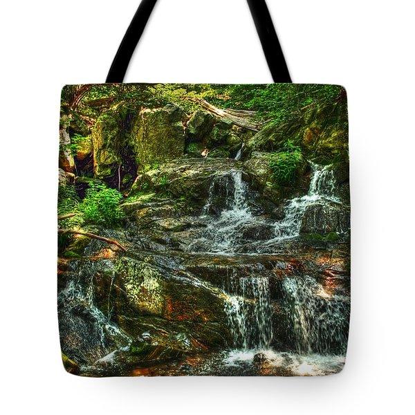 Gentle Falls Tote Bag by Dan Stone