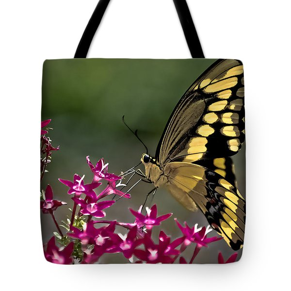 Gentle Giant Tote Bag by DigiArt Diaries by Vicky B Fuller