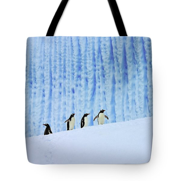 Gentoos On Ice Tote Bag by Tony Beck