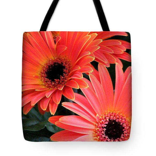 Gerbera Bliss Tote Bag by Rory Sagner