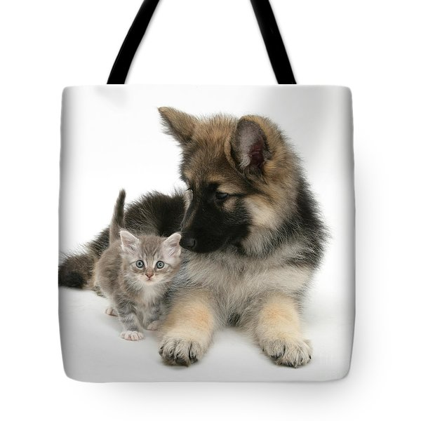 German Shepherd Dog Pup With A Tabby Tote Bag by Mark Taylor