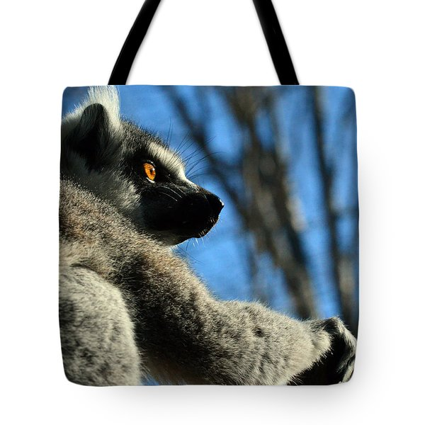 Get Ready Here I Come Tote Bag by Sandi OReilly