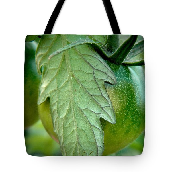Getting There Tote Bag by Chris Berry