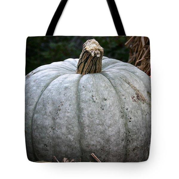 Ghost Pumpkin Tote Bag by Susan Herber