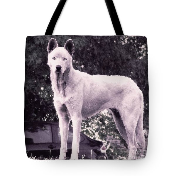 Tote Bag featuring the photograph Ghost The Wolf by Maria Urso