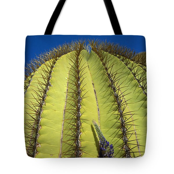 Giant Barrel Cactus Ferocactus Diguetii Tote Bag by Tui De Roy