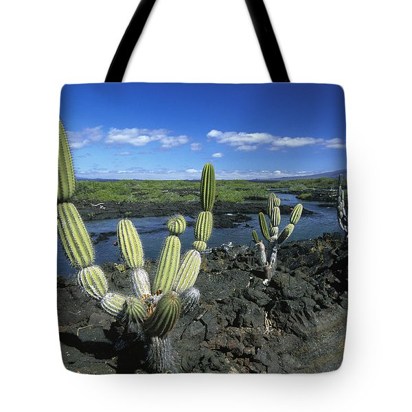 Giant Candelabra Cactus Jasminocereus Tote Bag by Winfried Wisniewski