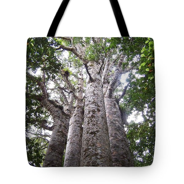 Tote Bag featuring the photograph Giant Kauri Grove by Peter Mooyman