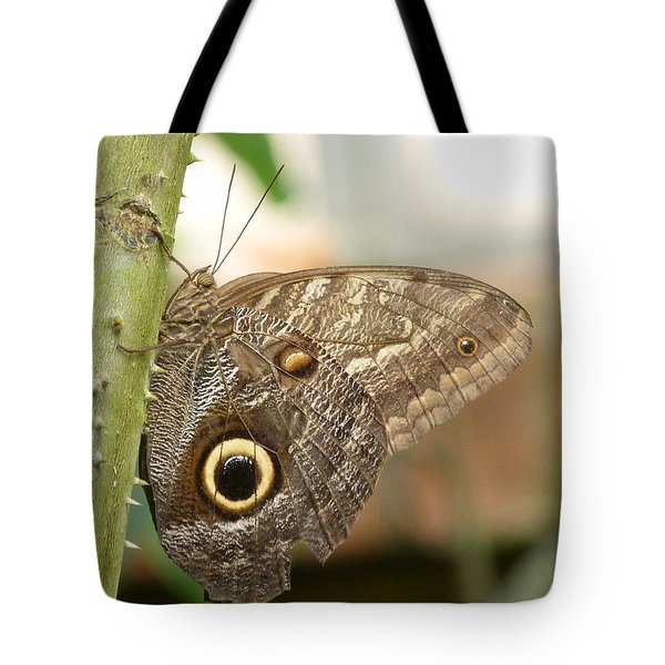 Tote Bag featuring the photograph Giant Owl Butterfly by Lynn Bolt