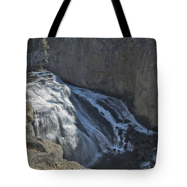 Gibbon Falls 9472 Tote Bag by Michael Peychich