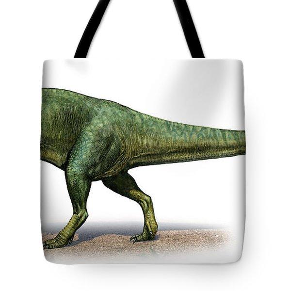 Giganotosaurus Carolinii, A Prehistoric Digital Art By