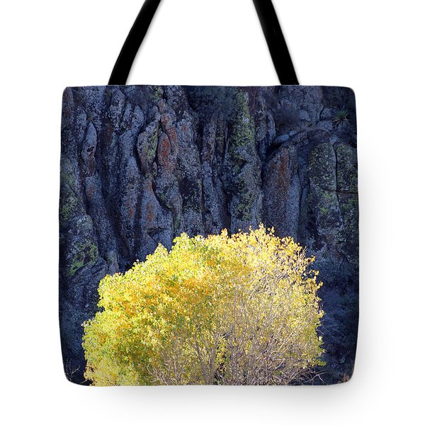 Gilded Autumn Tote Bag