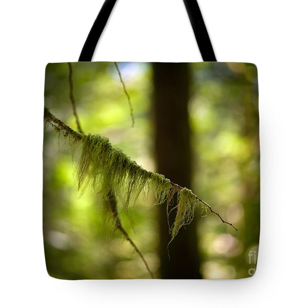 Gilded Branch Tote Bag by Mike Reid