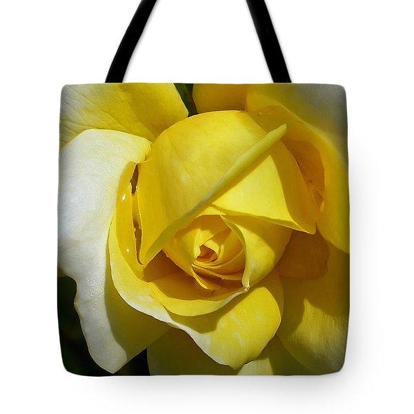 Gina Lollobrigida Rose Tote Bag by Kaye Menner