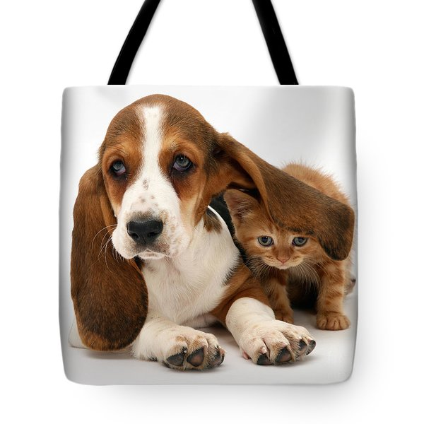 Ginger Kitten And Basset Puppy Tote Bag by Jane Burton