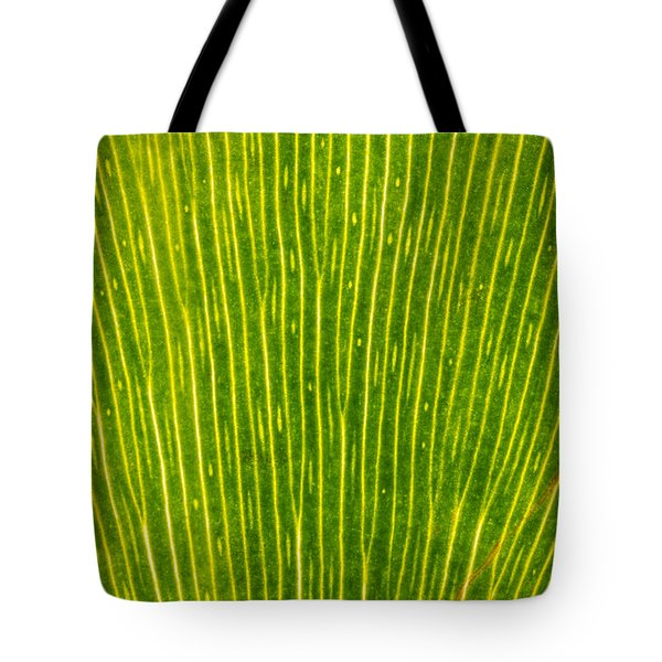 Ginko Tree Leaf Tote Bag by Steve Gadomski