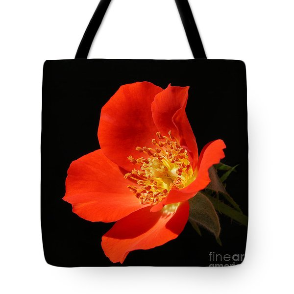 Gizmo Rose Tote Bag