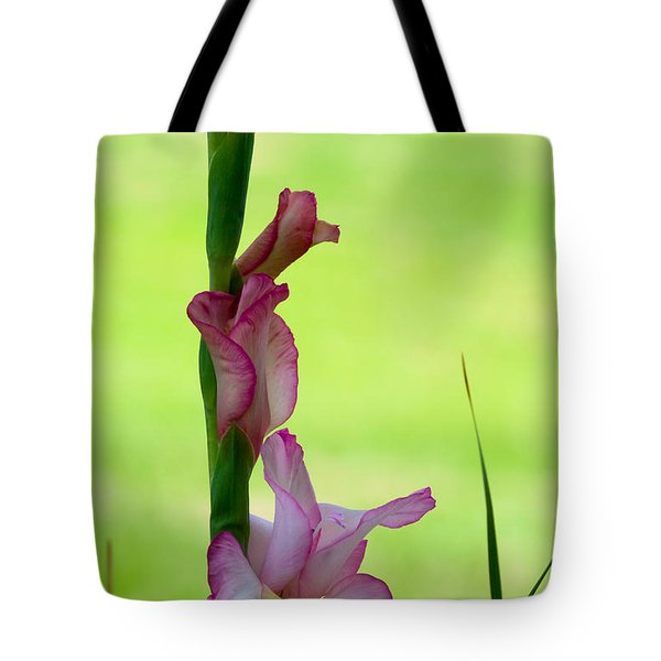 Tote Bag featuring the photograph Gladiolus Blossoms by Ed Gleichman