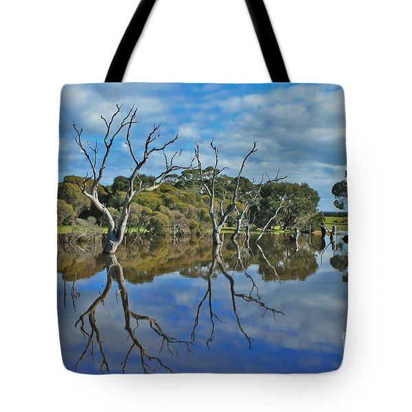 Tote Bag featuring the photograph Glass Lake by Stephen Mitchell