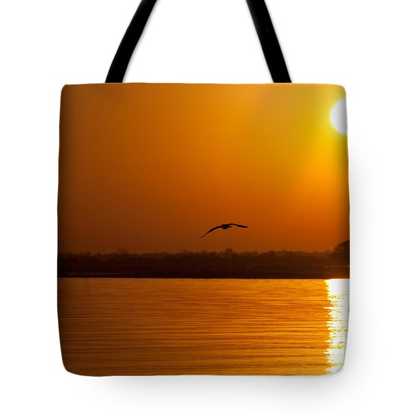 Glides Into Evening Tote Bag by Karol Livote