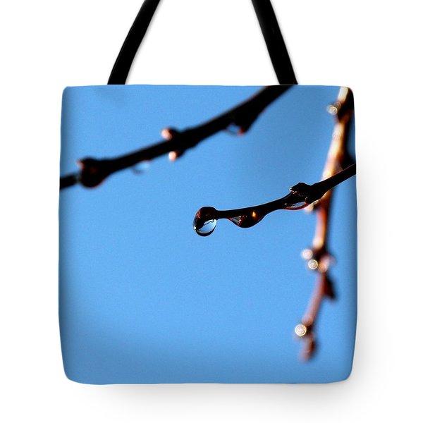 Glistening Dewdrops Tote Bag by Will Borden