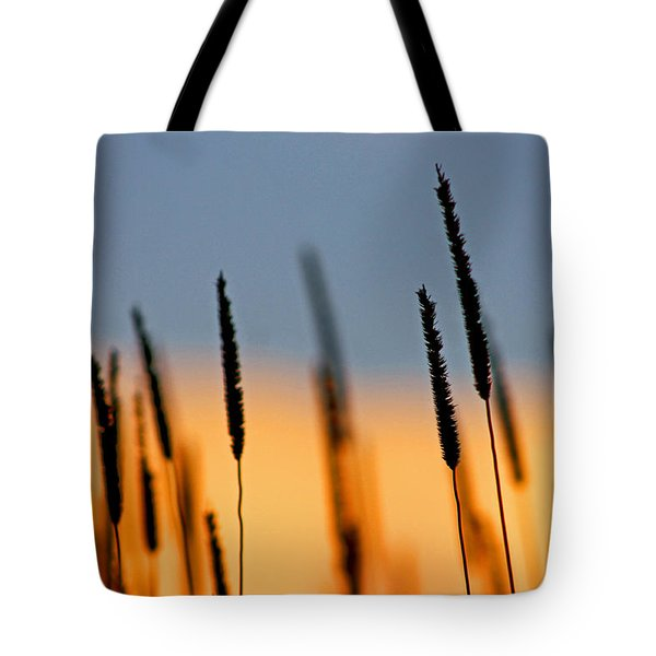 Glow Tote Bag by Bruce Patrick Smith