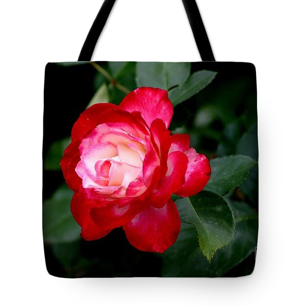 Glowing Tote Bag by Living Color Photography Lorraine Lynch