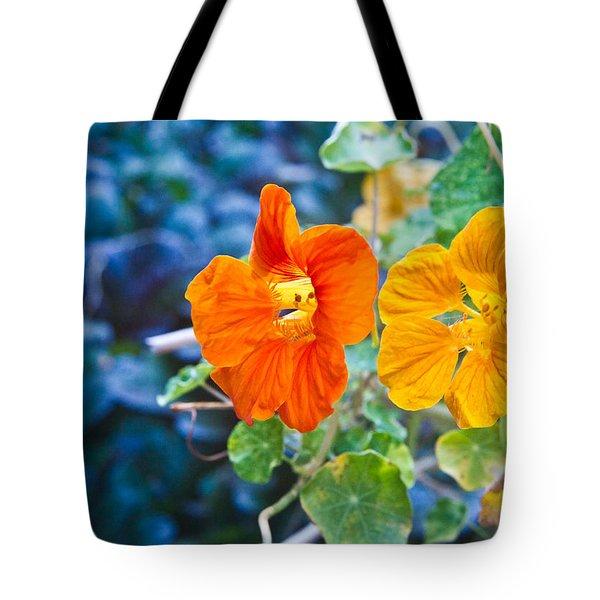 Glowing Nasturtiums 2 Tote Bag by Douglas Barnett