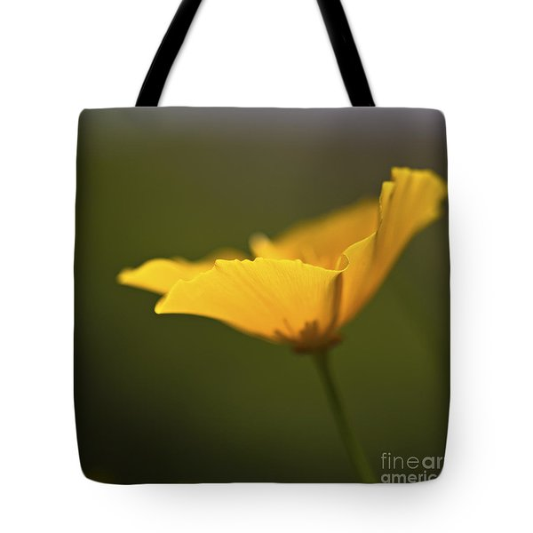 Golden Afternoon. Tote Bag