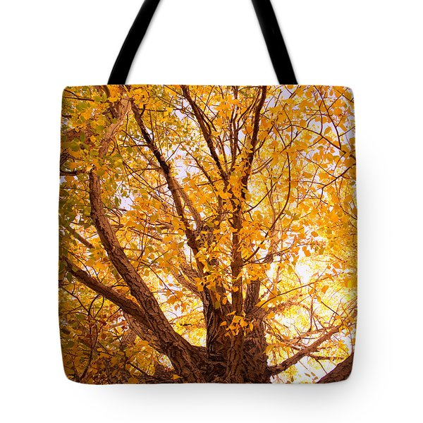 Golden Autumn View Tote Bag by James BO  Insogna