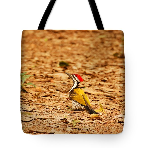 Tote Bag featuring the photograph Golden Backed Woodpecker by Fotosas Photography