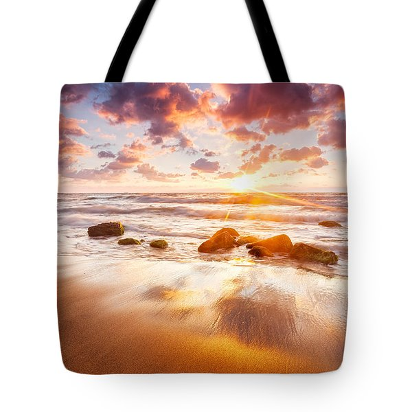 Golden Beach Tote Bag by Evgeni Dinev
