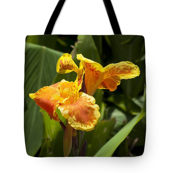 Golden Canna Tote Bag by Kenneth Albin