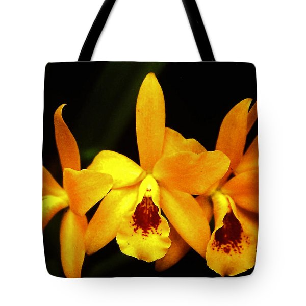 Tote Bag featuring the photograph Golden Cattleya by Rosalie Scanlon