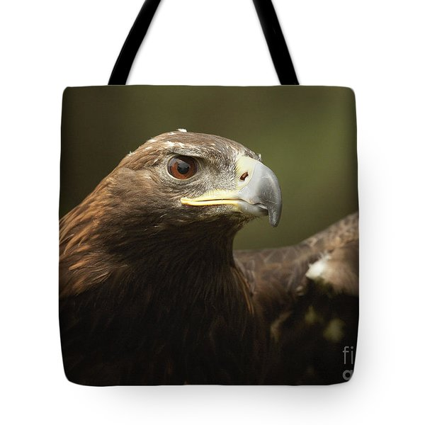 Tote Bag featuring the photograph Golden Eagle by Doug Herr