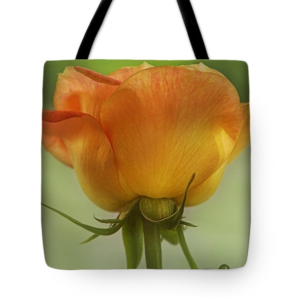 Tote Bag featuring the photograph Golden Rose by Joan Bertucci