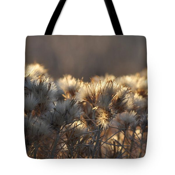 Tote Bag featuring the photograph Gone To Seed by Fran Riley