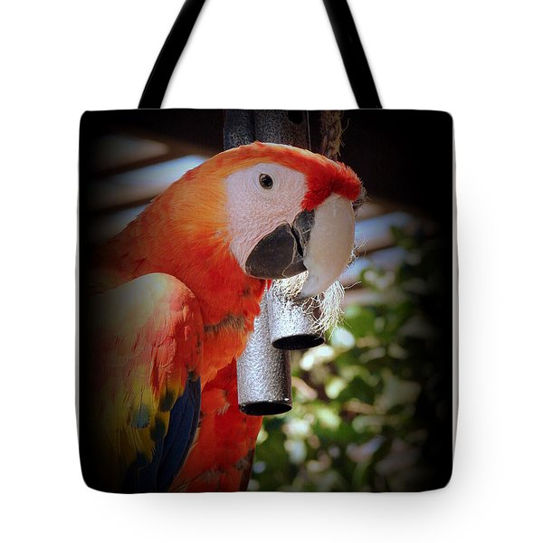 Gong Tote Bag by Priscilla Richardson