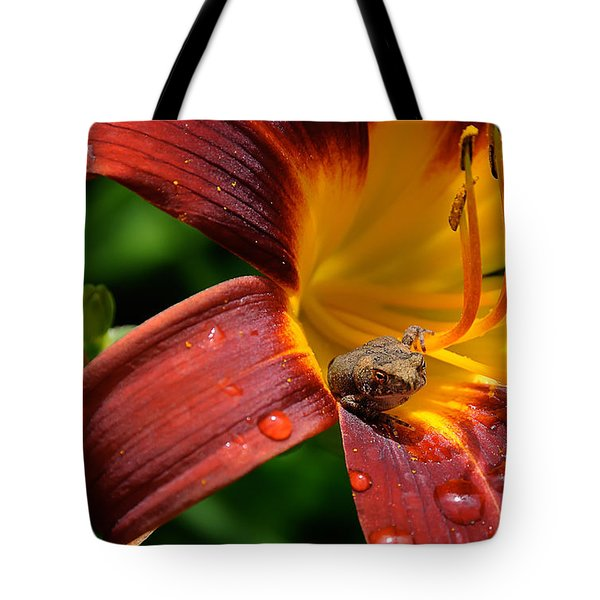 Good Morning Tote Bag by Lois Bryan