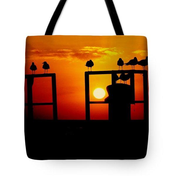Goodnight Gulls Tote Bag by Karen Wiles