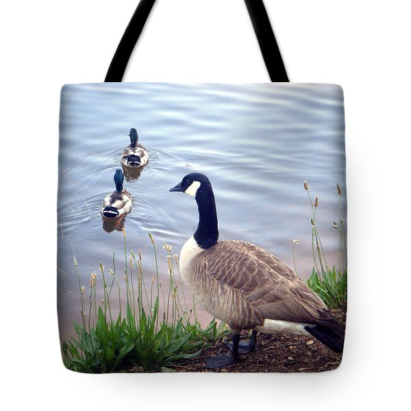 Tote Bag featuring the photograph Goose And Ducks by Kelly Hazel
