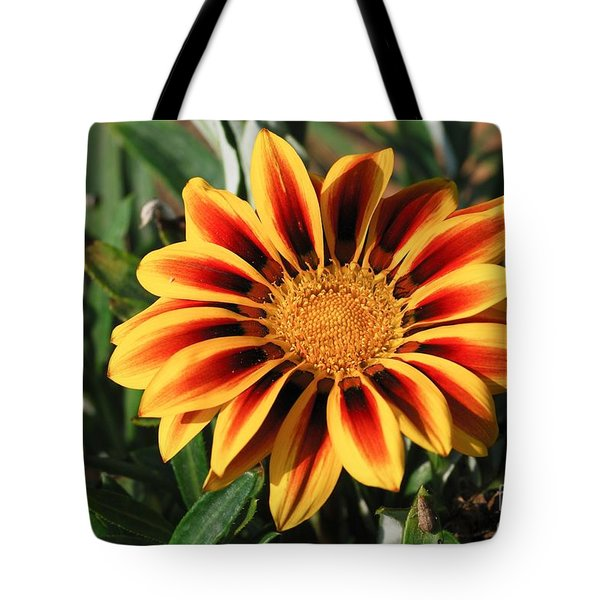 Gorgeous Beauty Tote Bag
