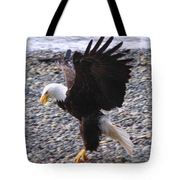Got It Tote Bag by Kym Backland