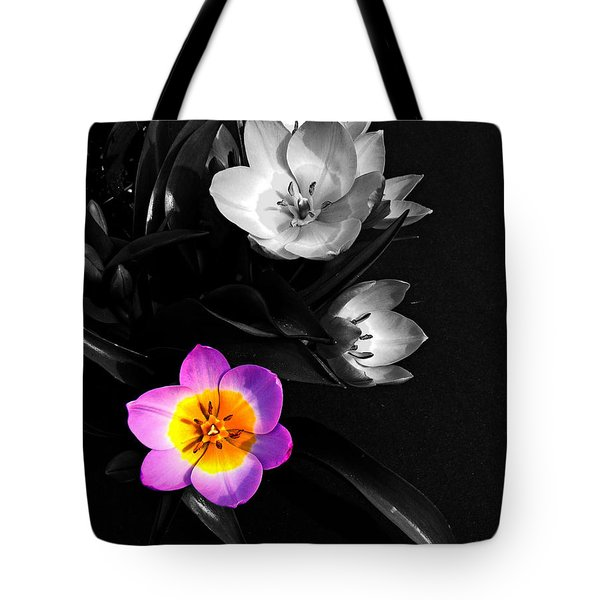 Grabbing The Spotlight Tote Bag