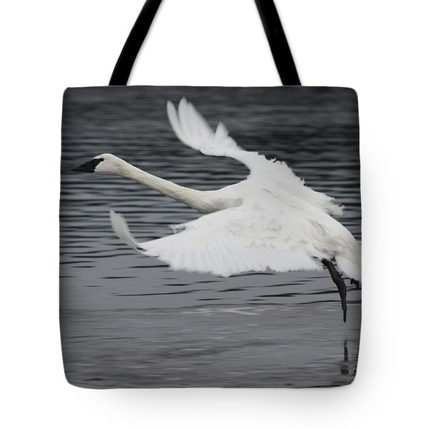 Tote Bag featuring the photograph Graceful Landing by Cathie Douglas